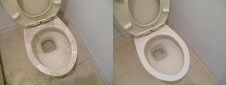 110405-toilet.jpg
