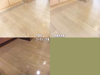 110831-coating2.jpg