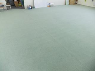 120111-carpet.JPG