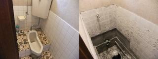 120201-toilet.jpg