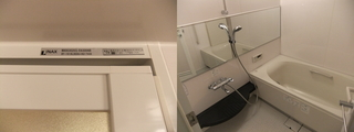 120314-bathroom2.jpg