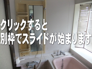 120411-bathroom.jpg