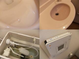 120711-toilet.jpg