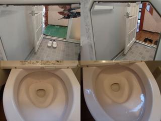 130108-toilet.jpg