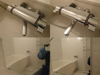 130219-bathroom1.jpg