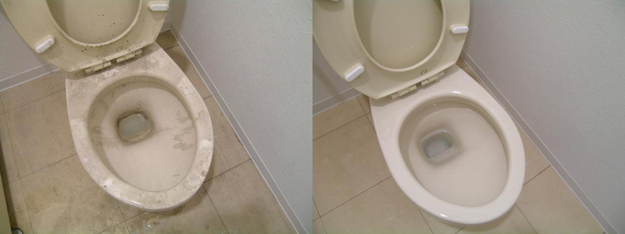 http://ajras.net/images/110405-toilet.jpg