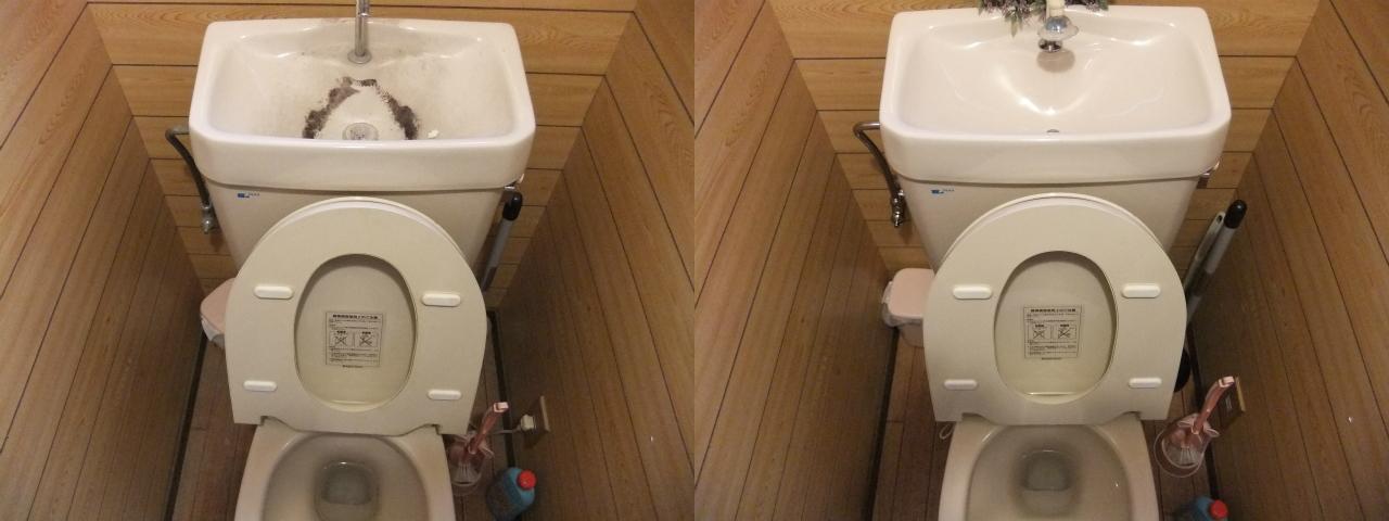 http://ajras.net/images/120208-toilet.jpg
