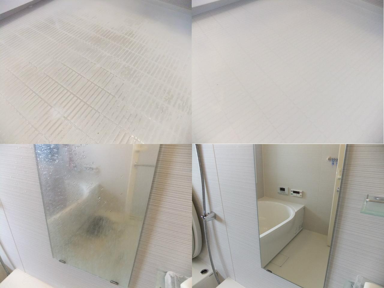 http://ajras.net/images/120625-bathroom1.jpg