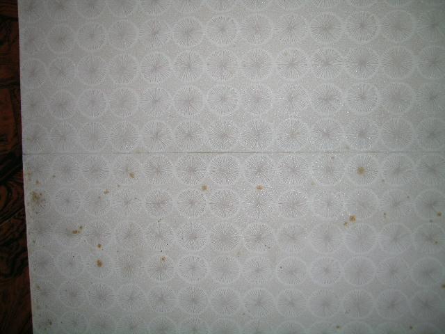 http://ajras.net/images/tenjyou090831b.JPG