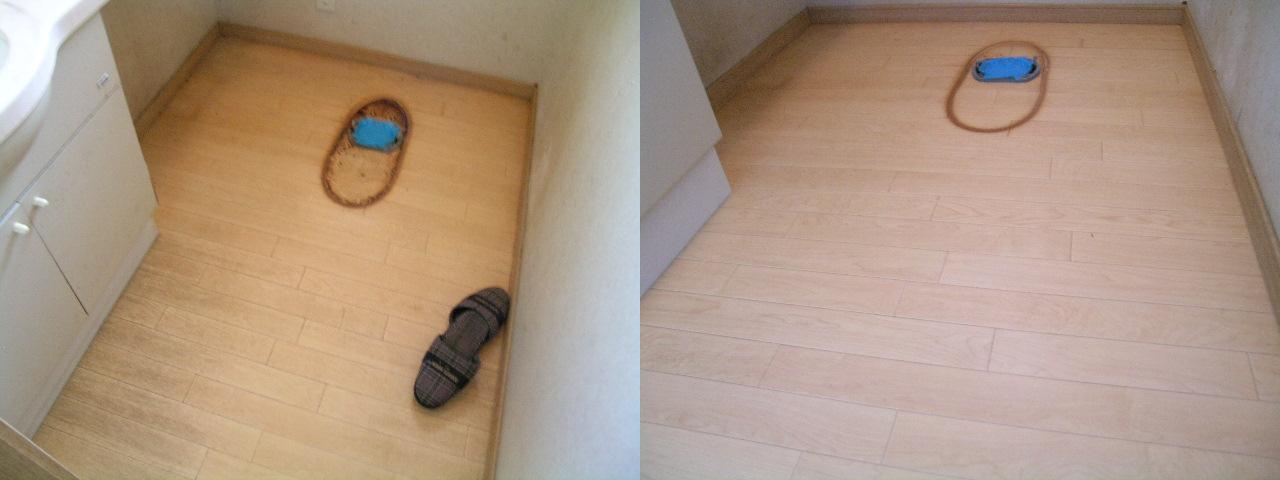 http://ajras.net/images/toilet-floor100531.JPG